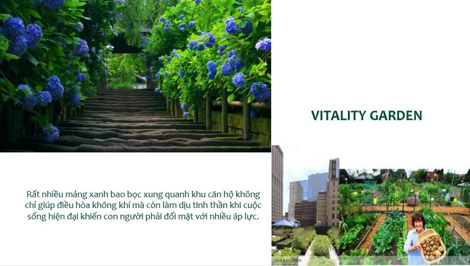 Vitality Garden